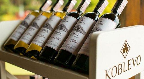 Дегустация на винзаводе Коблево