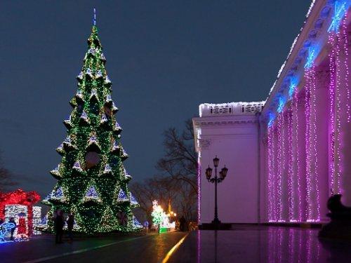 елка на бульваре