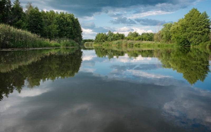 река Седнев